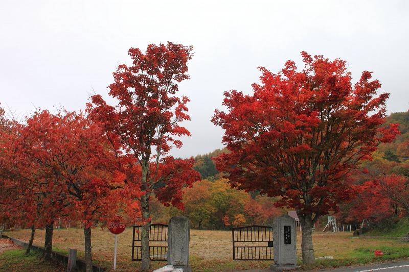 2012年10月27日金峰山~尾白川渓谷_027