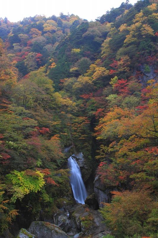 2012年10月27日金峰山~尾白川渓谷_049