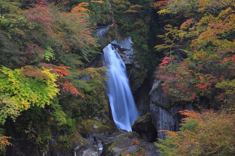2012年10月27日金峰山~尾白川渓谷_050