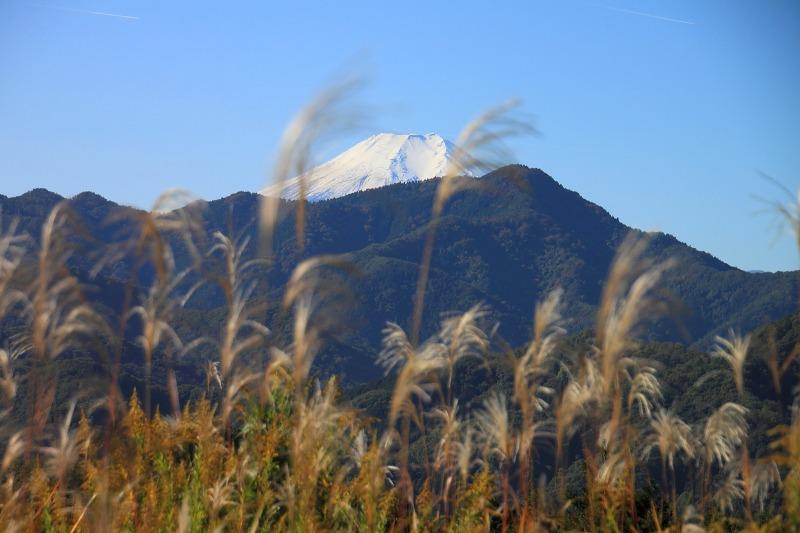 大月秀麗富嶽十二景①_017