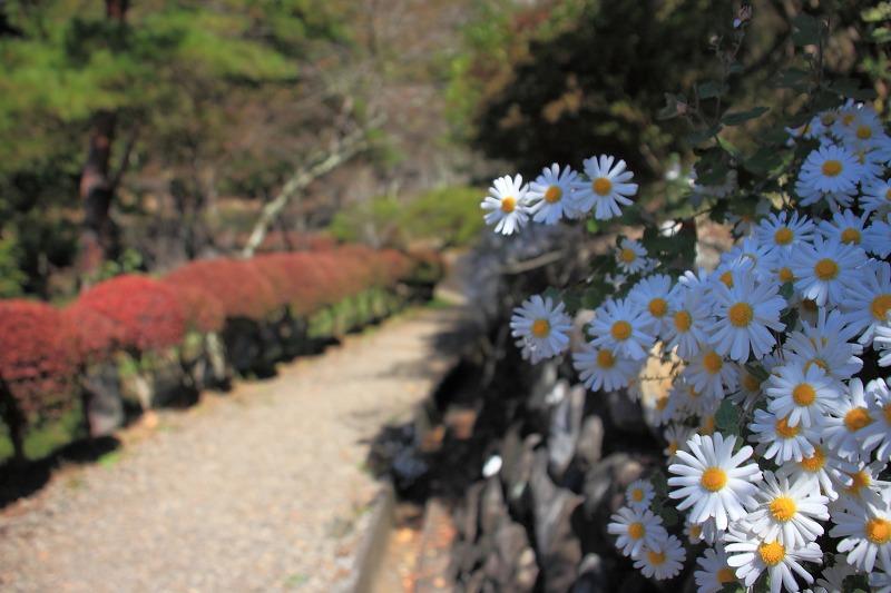 大月秀麗富嶽十二景①_023