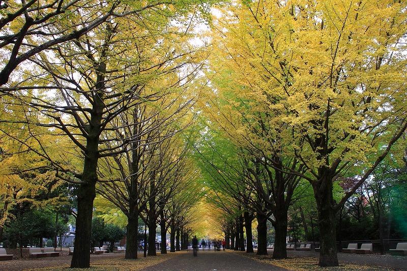 2012年11月10~11日 秋_006