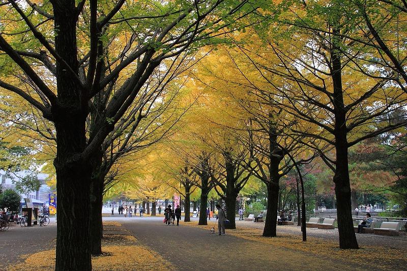 2012年11月10~11日 秋_009