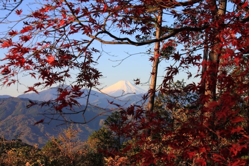 2012年11月18日高尾山~陣馬山縦走_013