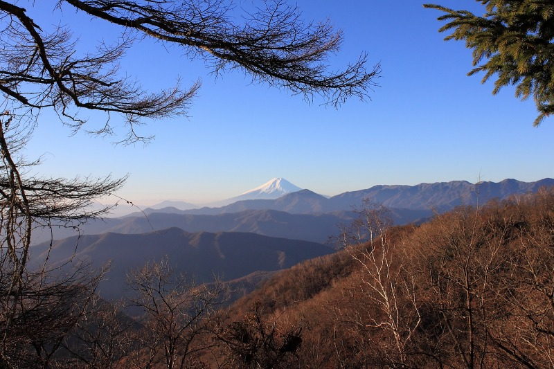 2012年11月25日 雲取山_007
