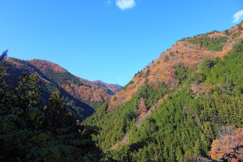 2012年11月25日 雲取山_038