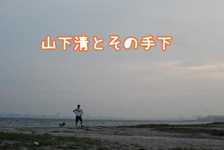 DSC_3411.jpg