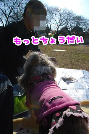DSC_5908.jpg