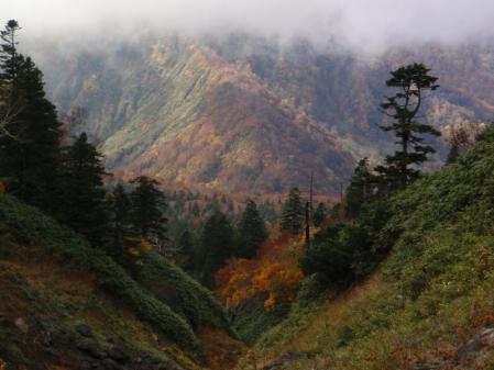 大岳ルート