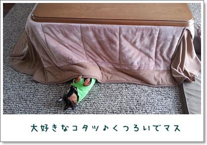 20121101_103307.jpg