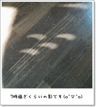 2012_0521_064849.jpg