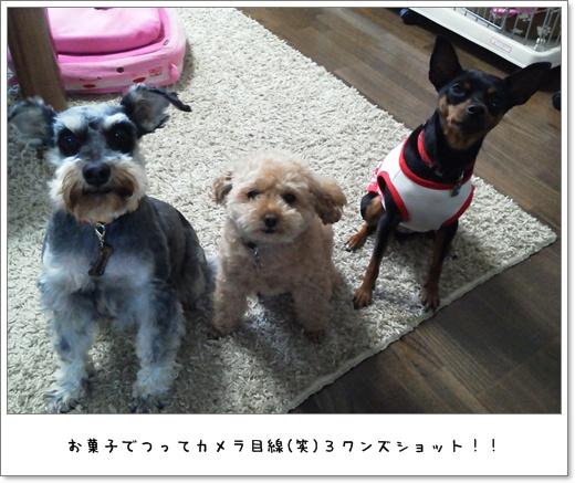 2012_0521_170640.jpg