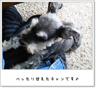 2012_0522_105819.jpg