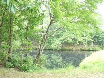 120523-亀の池.-01jpg