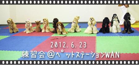 13_20120627215812.jpg
