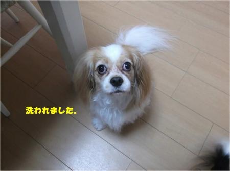 013_convert_20140930184850.jpg