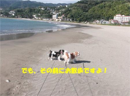 01_convert_20140929172046.jpg