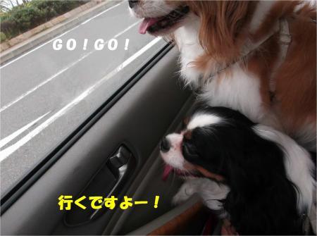 01_convert_20141008174952.jpg