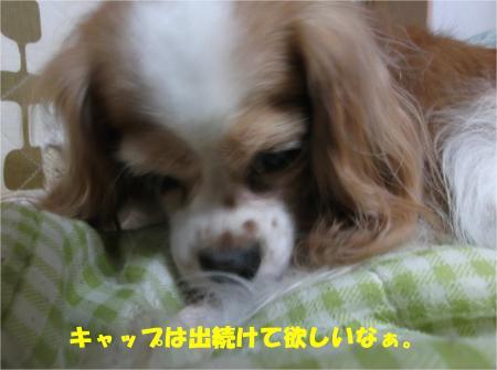 01_convert_20141009173832.jpg