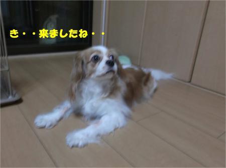 02_convert_20140918174542.jpg