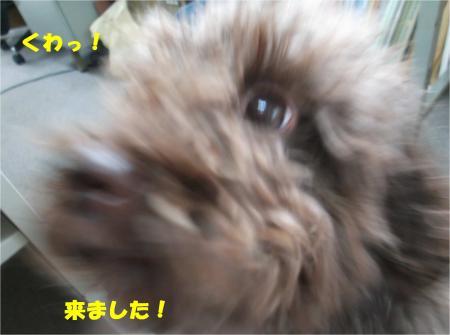 02_convert_20141017211816.jpg