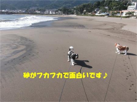 03_convert_20140929172104.jpg