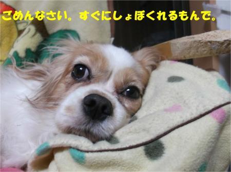 04_convert_20140919182856.jpg