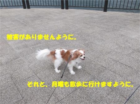 04_convert_20141014173047.jpg