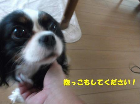 04_convert_20141021180852.jpg