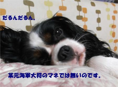 05_convert_20140924174513.jpg