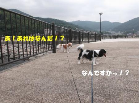 05_convert_20141014173057.jpg