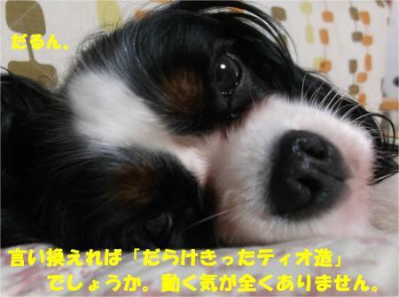 06_convert_20140924174524.jpg