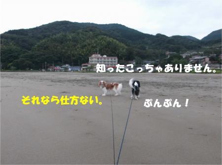 06_convert_20141006172451.jpg