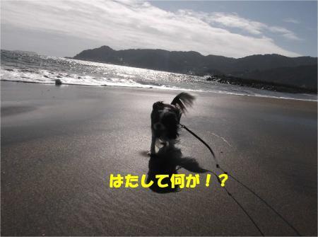 07_convert_20140929172140.jpg