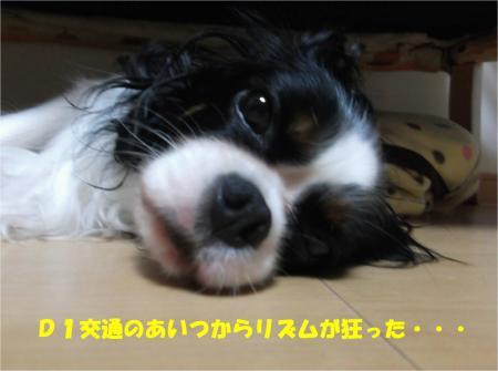 07_convert_20141008175127.jpg