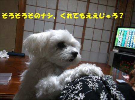 08_convert_20140926181624.jpg