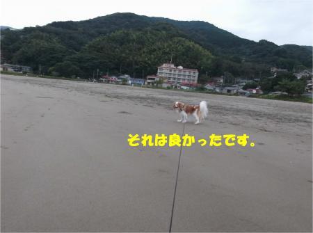 08_convert_20141006172516.jpg