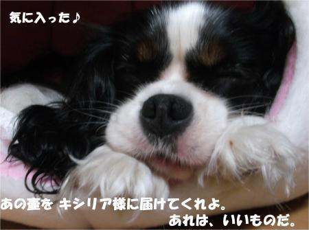 08_convert_20141014173127.jpg
