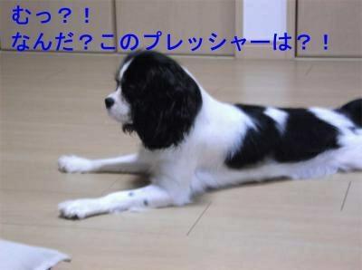 nt002_convert_20120131165058[1]_convert_20120131175239[1]