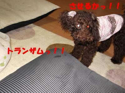 nt011_convert_20120131170343[1]_convert_20120131180714[1]