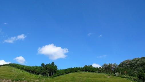 20100828_空