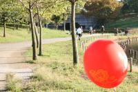 徳生公園5