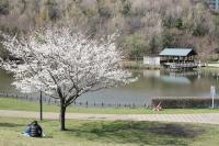 徳生公園14