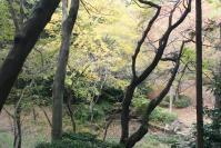 都筑の森の秋2010-7