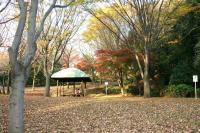錦繍の森2010-15