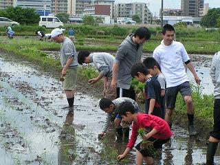 2012.05.12おやじ田植 4