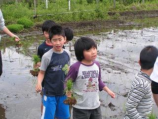 2012.05.12おやじ田植 1