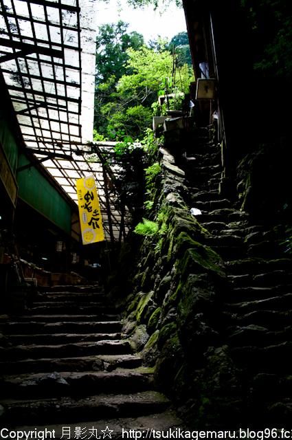 しっとりとした階段