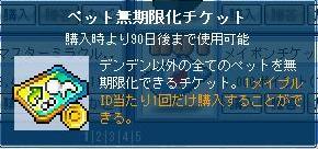 Maple121031_2.jpg