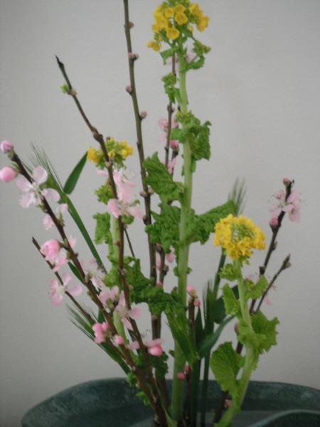 生け花モモ0226